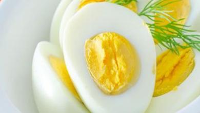 Photo of فوائد البيض المسلوق مصدر جيد للكاسيوم والبروتين والأحماض الدهنية