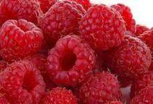 Photo of Raspberry Ketones حبوب راسبيري كيتونطبيعية لضبط وزن الجسم