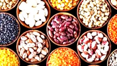Photo of البروتين النباتي