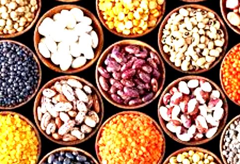 بروتين النبات والعضلات