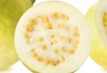 Photo of فوائد الجوافة للسكري قليلة السكريات وعالية البوتاسيوم