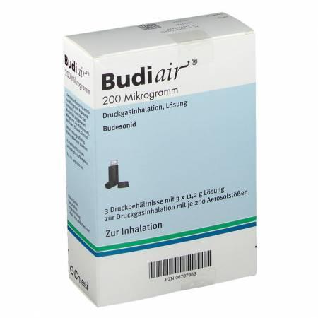 BUDIAIR